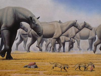 Recreación de una manada de Indricotherium transouralicum', los mayores mamíferos que han pisado la Tierra.