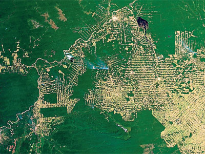 En esta imagen de satélite del estado de Rondônia se observa cómo progresa la deforestación. Las carreteras legales o ilegales abren remotas regiones de selva, atrayendo a pequeños granjeros que clarean el bosque dejando un patrón de espina de pez. Estas raspas' se acaban uniendo entre sí y arrasan grandes extensiones.